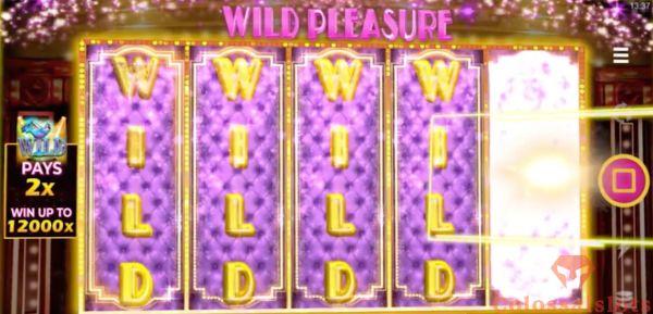 burlesque by dita wild pleasure